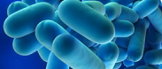 Legionella Awareness Training Course